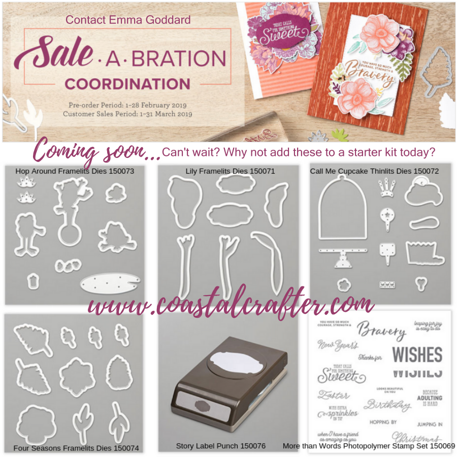 Check out inspiration from Emma Goddard Artisan Design Team Member 2019 using the Sale-A-Bration Coordination Products. Available for Pre-Order in Feb and for everyone to purchase 1st March-31st March. Can't wait? You can add these to your demonstrator starter kit.