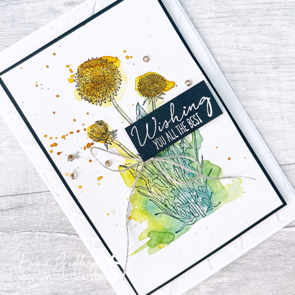 Dandelion using water colouring