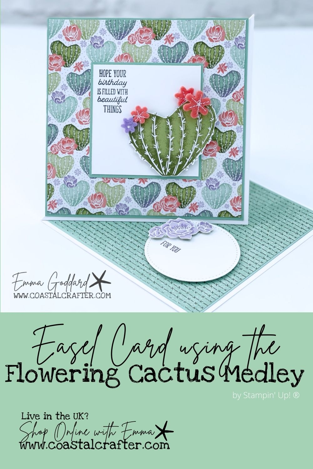 Flowering Cactus Product Medley